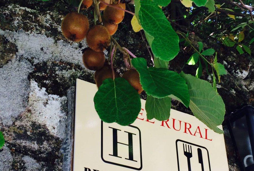HOTEL RURAL EL JARDÍN DEL CONDE